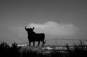 What is the bull in Spanish roads